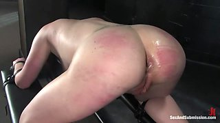 Submission of Kylie Ireland