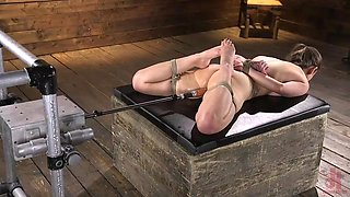 jiggly assed brunette chica getting drilled by machine